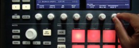 Maschine 2.3 Using The Arp Hold Feature